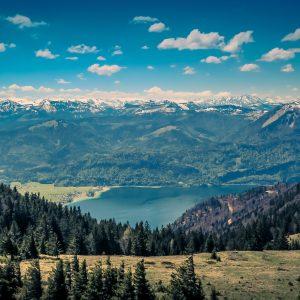 Klimawandel…aber doch nicht in Österreich?!