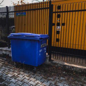 Dumpstern – Essen aus der Tonne