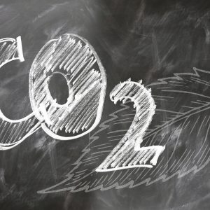 Neuseeland goes CO2 neutral