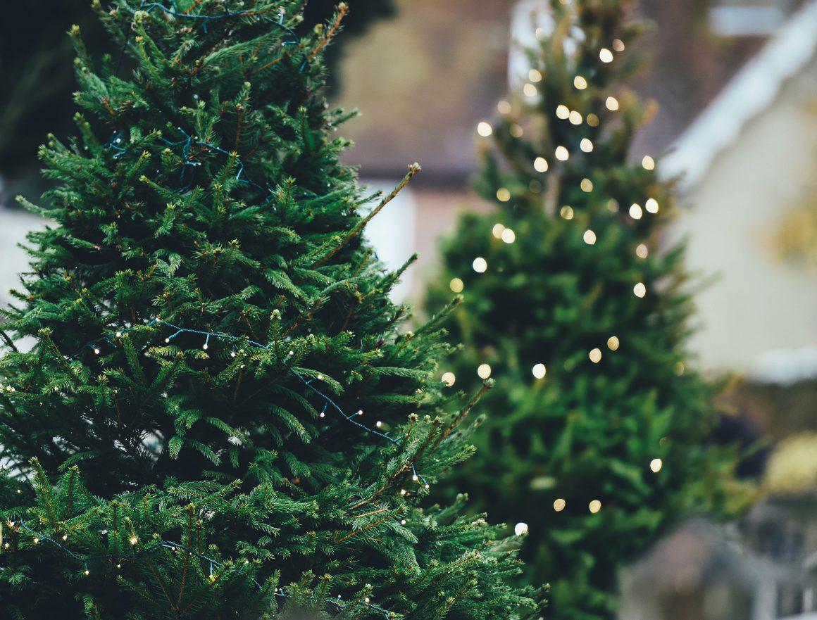 I'm dreaming of a Green Christmas – Tipps & Tricks für ein nachhaltigeres Weihachtsfest