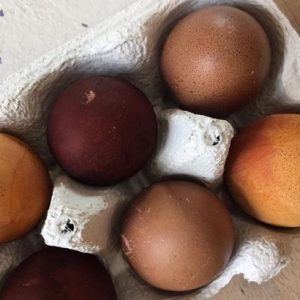 How to: nachhaltiges Osterfest