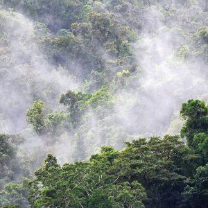 Indigene Völker Lateinamerikas und der Klimawandel