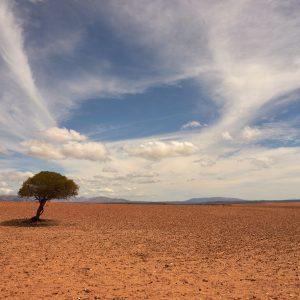 EU: Neue Strategie für die Anpassung an den Klimawandel