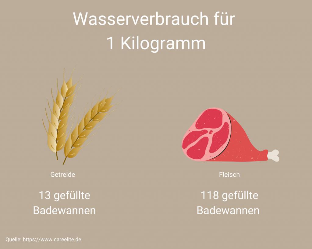 Wasserverbrauch Fleisch VS Getreide
